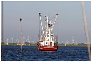 Verhängnisvolle Idylle: Die Handbreit Wasser unterm Kiel ist weg.